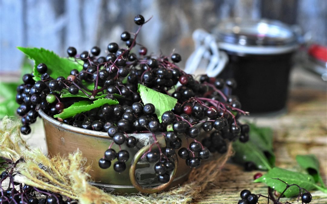 Boost Your Immunity with This Delicious Elderberry Smoothie