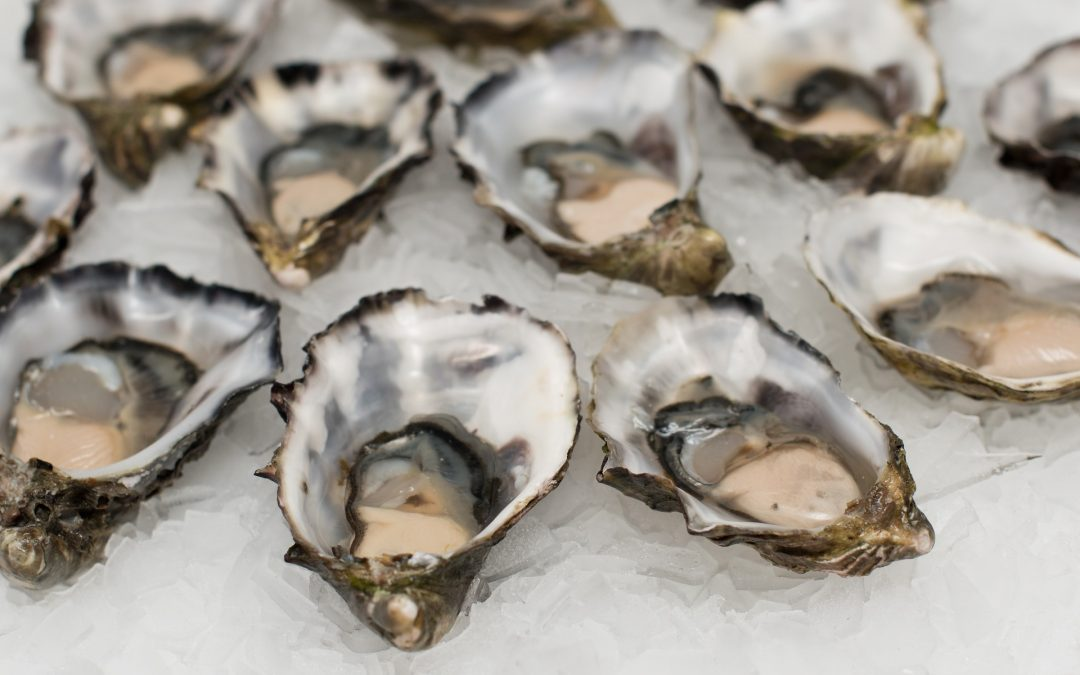 Oysters-It's What's For Valentine's Day Dinner