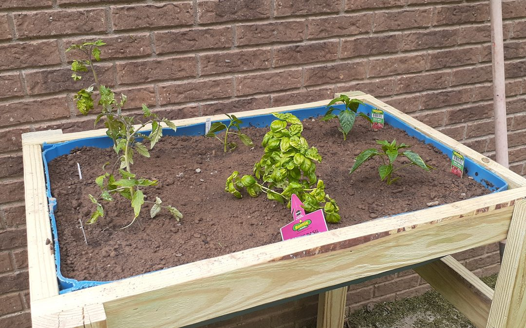 Spring Gardening and Raised Beds