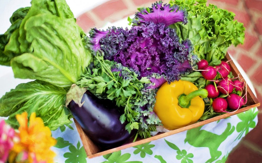 Eating with the Seasons, Is it Beneficial?